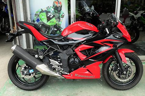 ninja250sl_200414_1.jpg